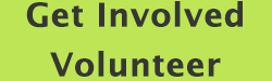 volunteers-green
